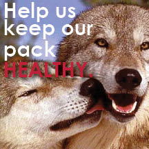 Help Us Keep Our Pack Healthy