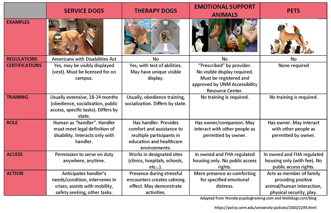 Animal Differences Chart